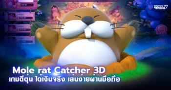 Mole rat Catcher 3D เกมตีตุ่น ได้เงินจริง เล่นง่ายผ่านมือถือ