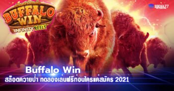 Buffalo Win สล็อตควายป่า ทดลองเล่นฟรีก่อนใครแค่สมัคร 2021