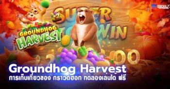Groundhog Harvest การเก็บเกี่ยวของ กราวด์ฮอก ทดลองเล่นได้ ฟรี
